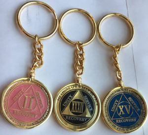 AA Medallion Holder Keychain For Recoverychip Reflex & Elegant Design Medallions - RecoveryChip