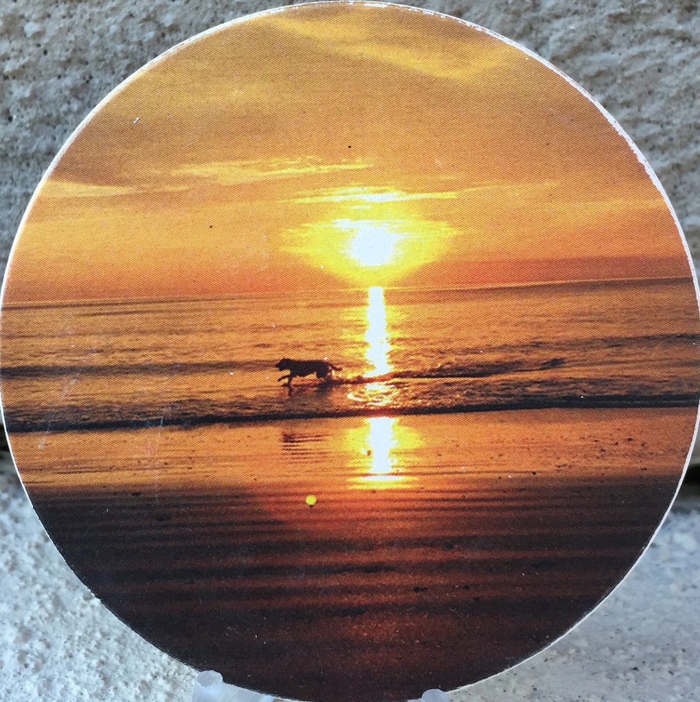 Dog Playing Sunrise Vilano Beach Absorbent Stone Car Cup Holder Coaster St Augustine - RecoveryChip