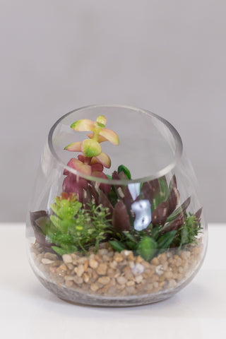Du Pot mix in round glass pot - Casa Febus - Home • Design