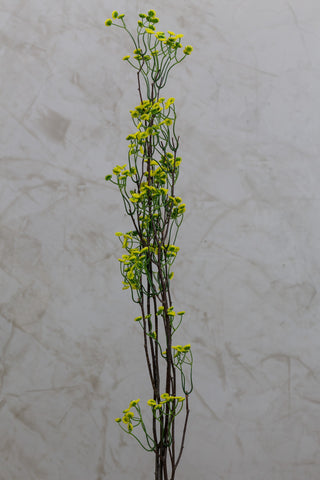 "32"" Natural Branch with Leaves - Yellow/Green"