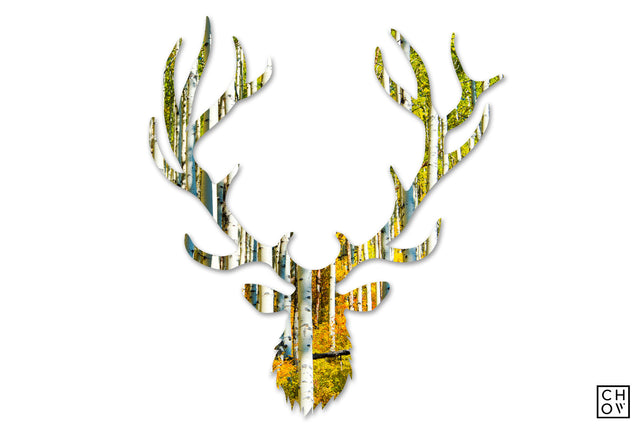 Autumn // Elk Avatar