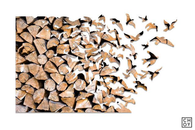 Firewood // Birds Avatar