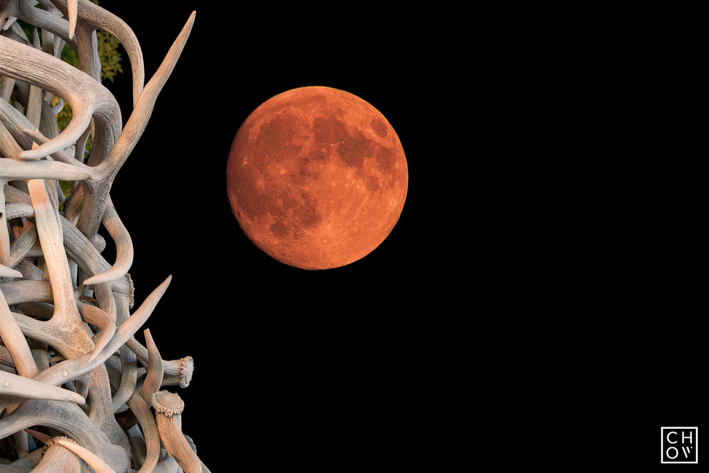 Blood Moon // Jackson Hole, Wyoming