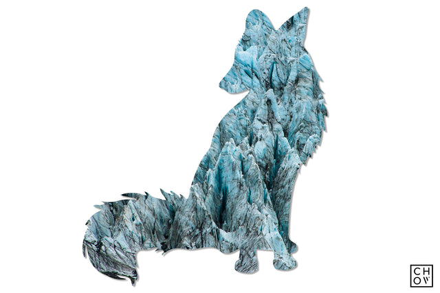Glacier // Fox Avatar