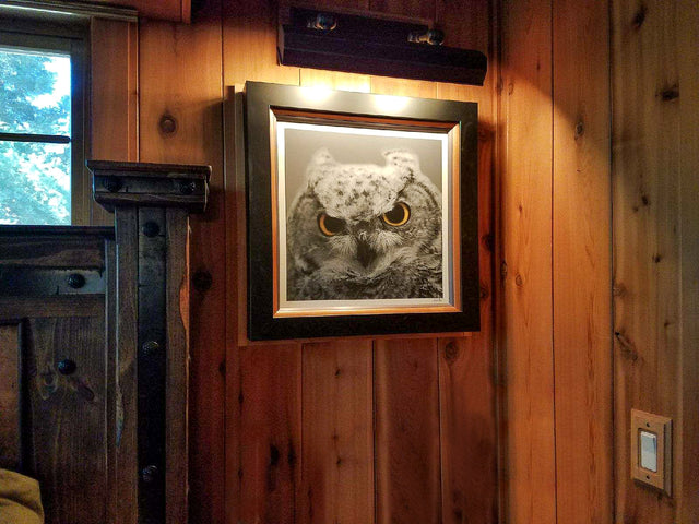 Owl Eyes Five // Idyllwild, California