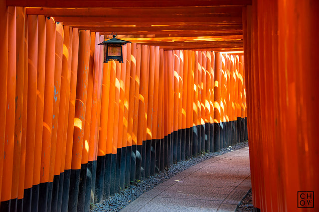 Fushimi Inari Shrine // Kyoto, Japan