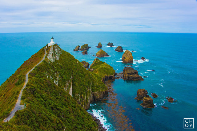 Nugget Point // Clutha, New Zealand