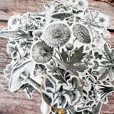 Vintage Black and White Flowers Stickers
