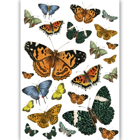 Dress My Craft - Transfer Me - Vintage Butterflies