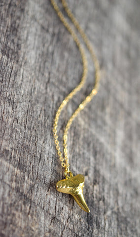 Sharks Tooth Necklace - Livin' Freely  - 1