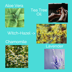 natural skin care ingredients. Lavender, Witch-hazel, aloe vera, tea tree oil & chamomile