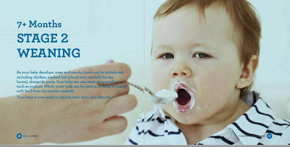 Baby Weaning, Feeding, Toddler recipe book