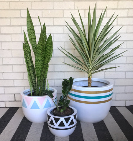Indoor pots Arc & Family