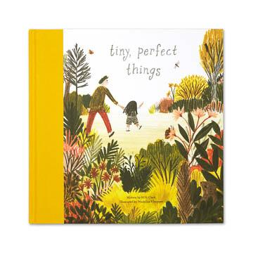 Tiny Perfect Things - Kids Book - Compendium Books
