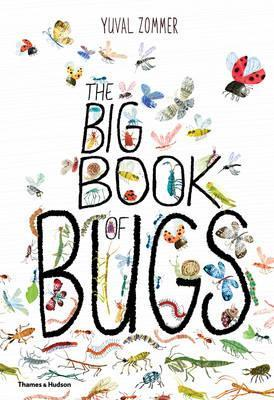 Big Book of Bugs- Kids Book