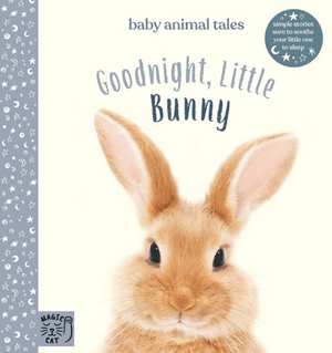 Kids Book- 'Goodnight Little Bunny'