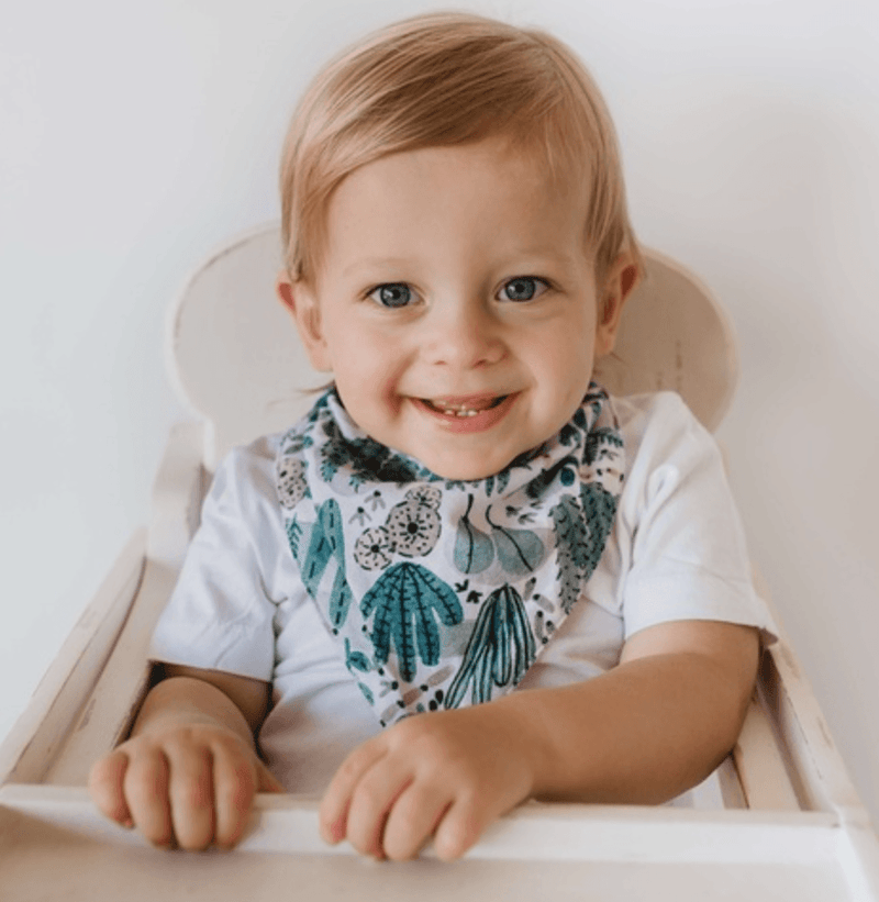 Dribble Bib - Arizona- Snuggle Hunny Kids