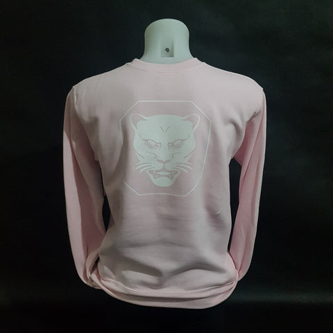 Light Pink Jumper 2018 - Jesus Amoretti