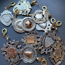 Load image into Gallery viewer, selection of silver and gold charms