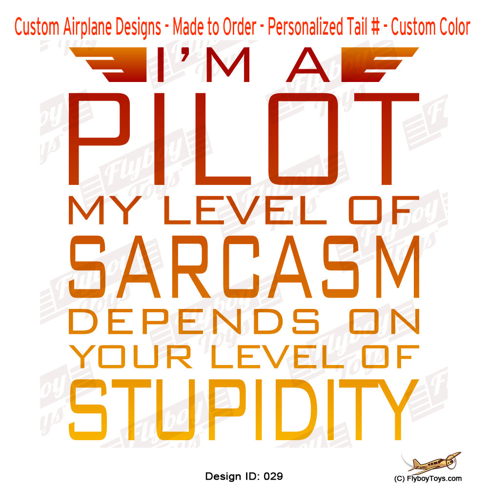 I'm a Pilot II Airplane Aviation Design