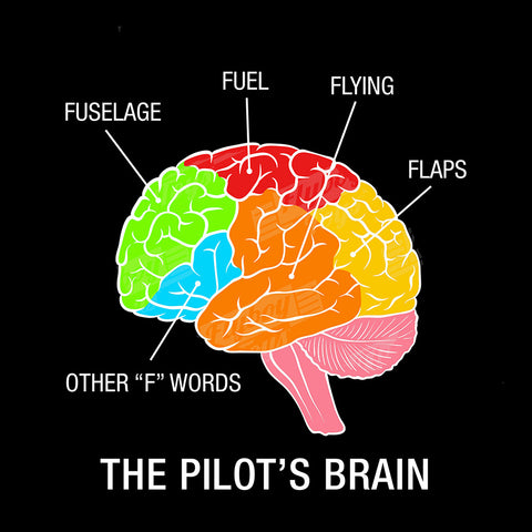 Pilot Brain Airplane Aviation Design