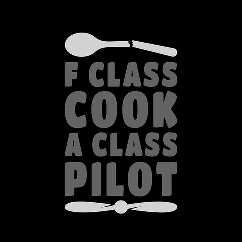 F Class Cook Aviation Airplane Design