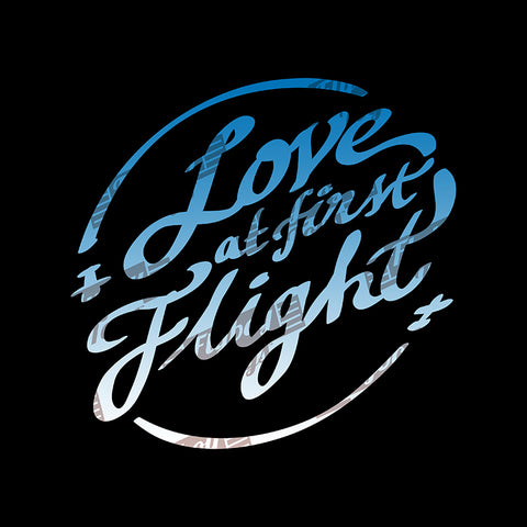 Love at First Flight Aviation Airplane Design