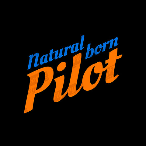 Natural Born Pilot 2 Aviation Airplane Design