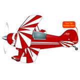 Aviat Pitts Special