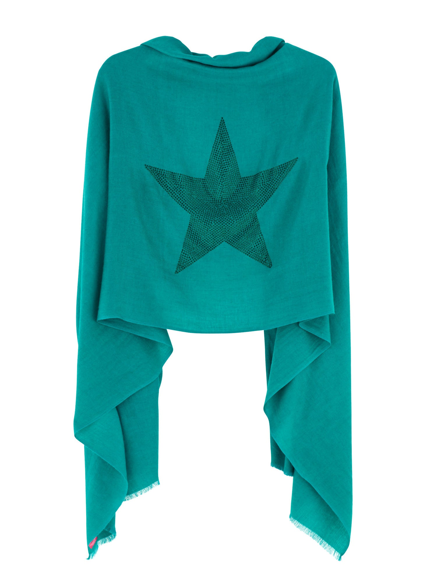 Crystal embellished cashmere pashmina shawl, green with star
