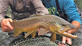 Guided Fly Fishing Trip - Gift Certificate - Upper Delaware River