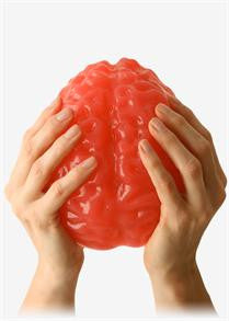 World's Largest Gummy Brain
