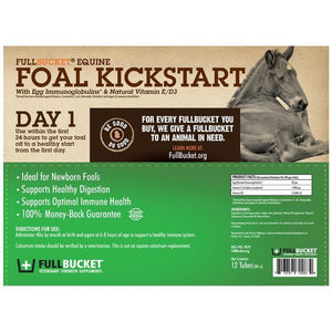 Foal Kick start by Full Bucket
