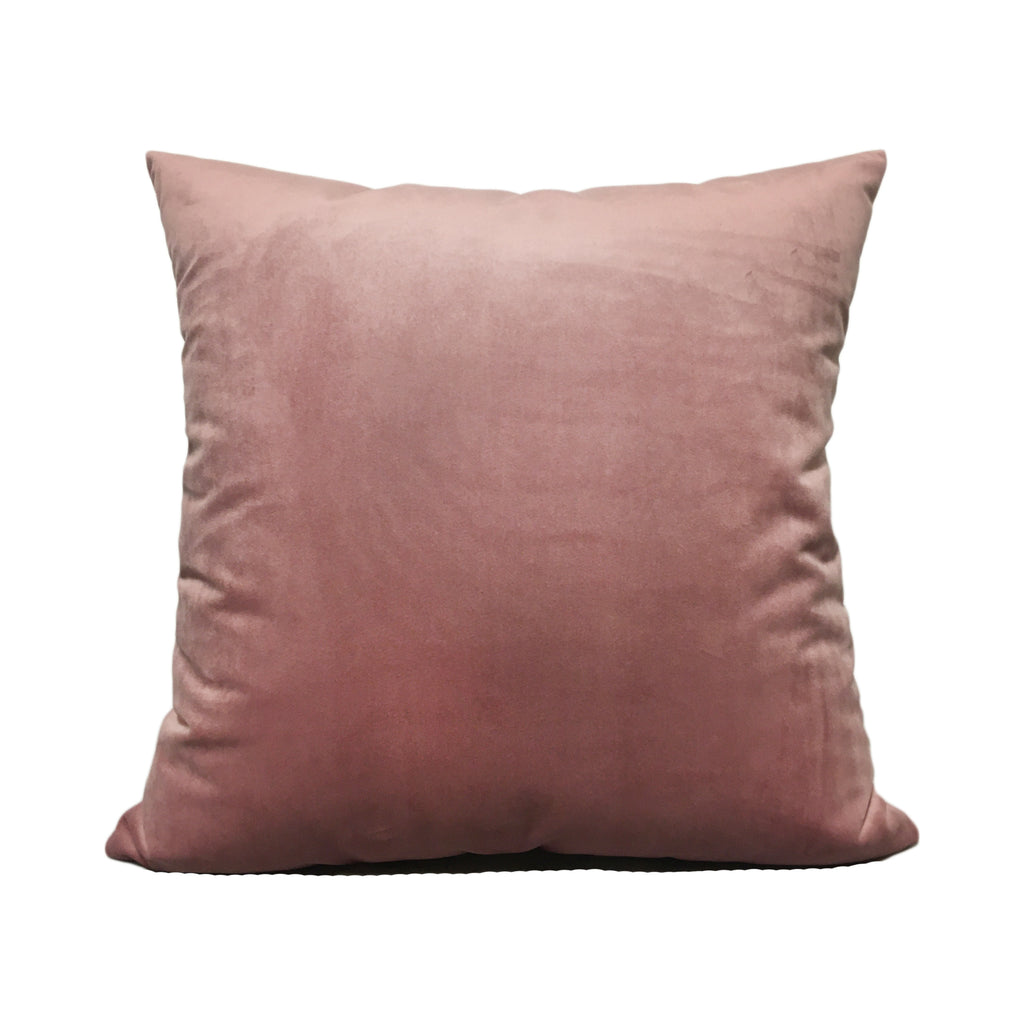 Franklin Velvet Blush Pink Throw Pillow 20x20""