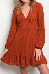 Long sleeve V-neck ruffled tunic dress.
