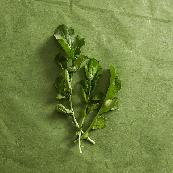 HydroSkin Know Your Greens Rocket Recipe