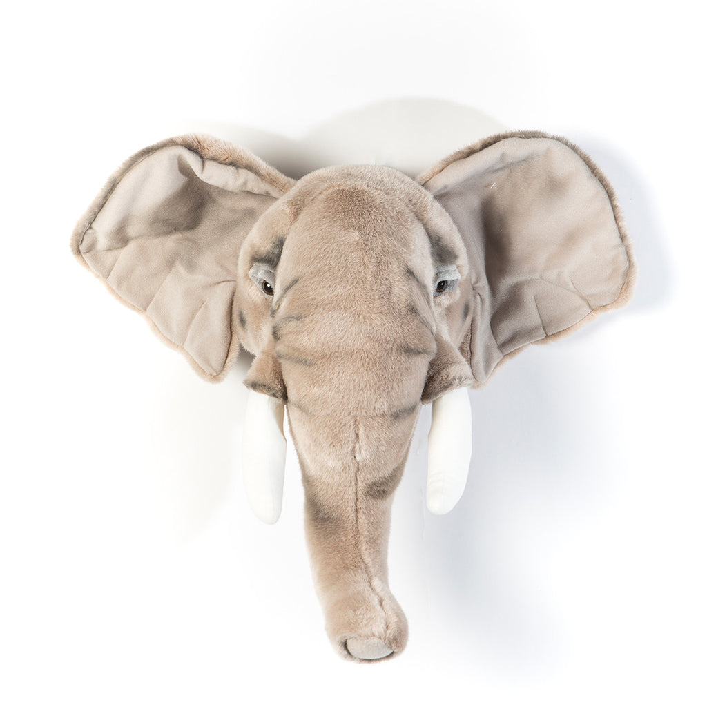 Animal Trophy Heads - Elephant George