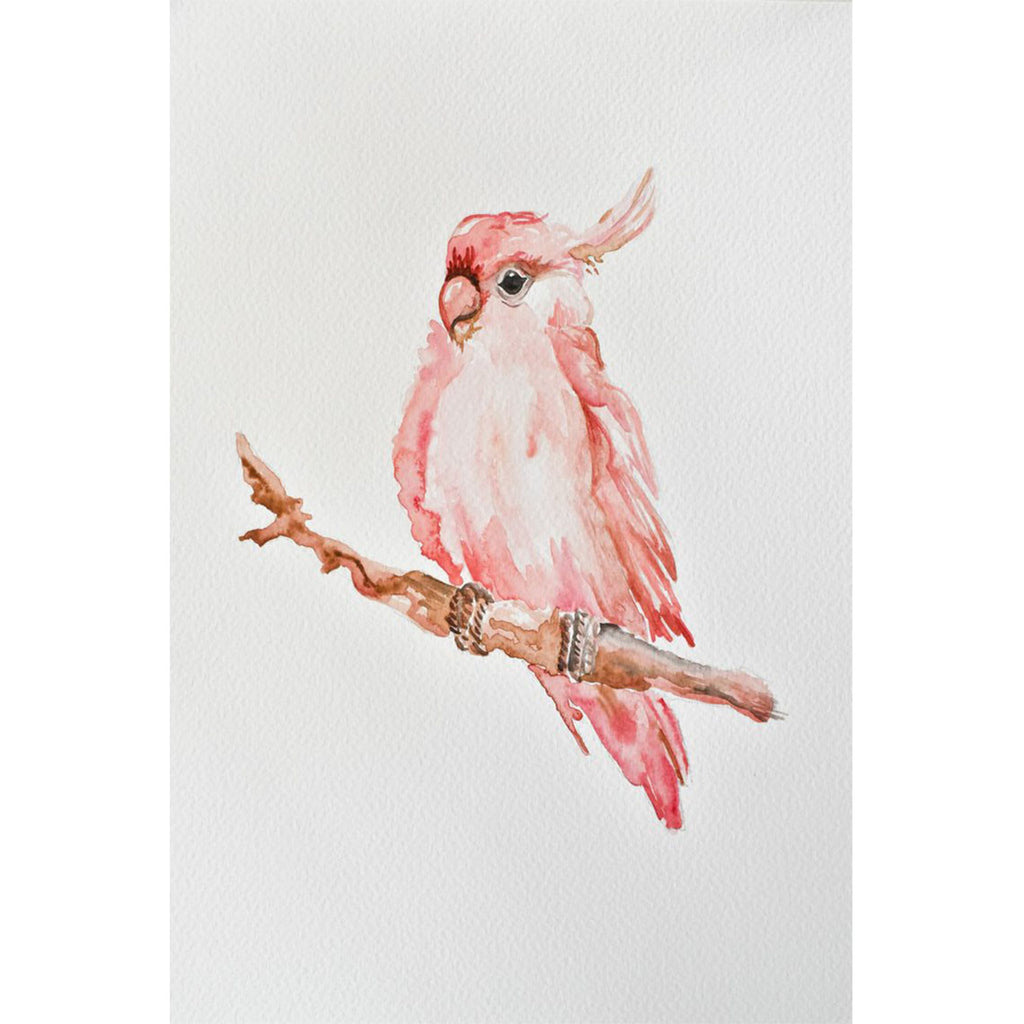 Watercolour Pink Parrot