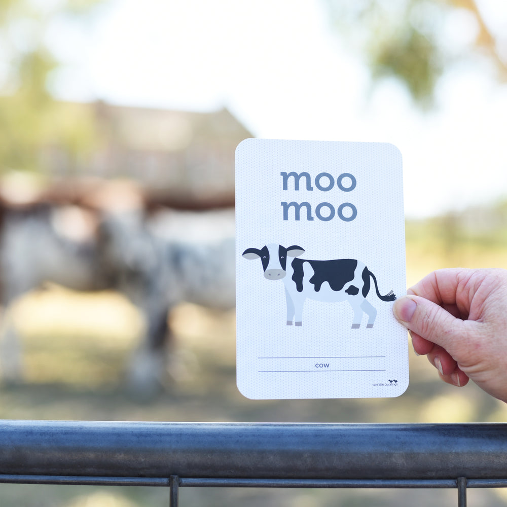 Flash Cards  - Animal Sounds