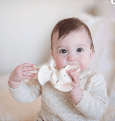 LOVE THIS! Meiya All Naural Rubber Teething Squeaker Boxed from Bonikka - shop at littlewhimsy NZ