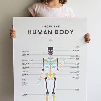 LOVE THIS! Squared Charts - Human Body from Squared Charts - shop at littlewhimsy NZ