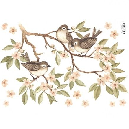 Wall Decals - Sparrows and Branches