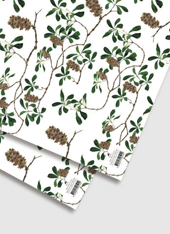 Gabby Malpas Banksia Wrapping Paper