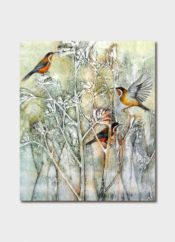 Jo Hollier - Spinebills Feasting in the Kangaroo  Paw