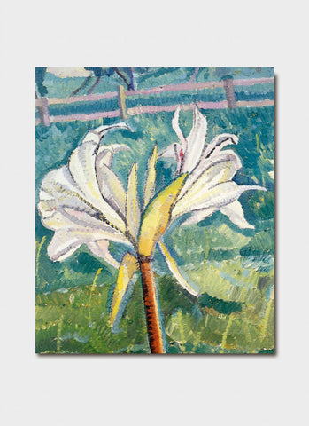 Grace Cossington Smith - Lily Growing in a Field