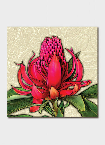 Padma art card - Majestic Waratah