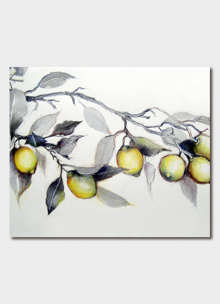 Jo Hollier - Lemon Tree