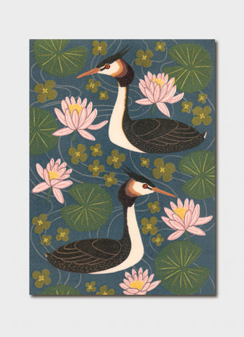 Kate Hudson art card - Great Crested Grebe