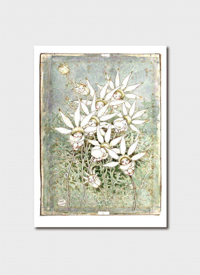May Gibbs Art Card - 'Flannel Flower Babies' from cover of Flannel Flowers and Other Bush Babies
