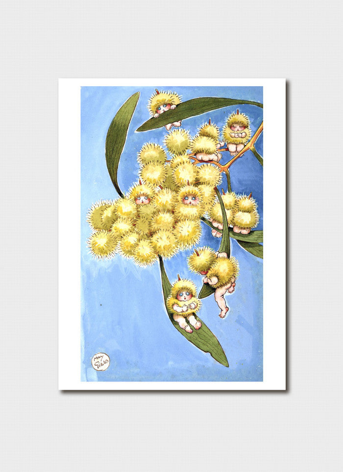 May Gibbs Art Card - 'Wattle Babies'